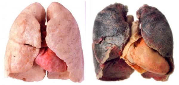 the-best-natural-way-to-clear-your-lungs-of-nicotine-and-tar1-600x287