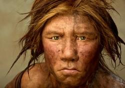 არქეოლოგიური აღმოჩენა – Homo Sapiens და ნეანდერტალელის ნაჯვარი