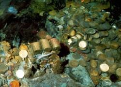 მეკობრეების საგანძურის აღმოჩენილი სამალავები